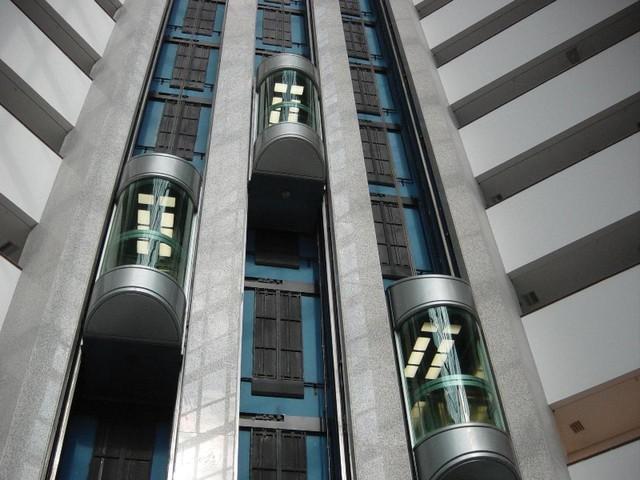 Quản lý chuyên ngành về hàng thang máy nhập khẩu